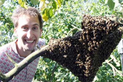 Photo of Barrett Klein with bees