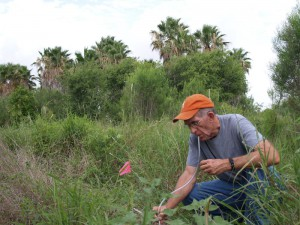Larry Gilbert collecting phorids TNC Southmost Preserve TX