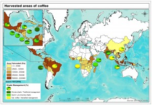Map showing how coffee management styles vary by country
