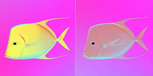 fish-invisibility