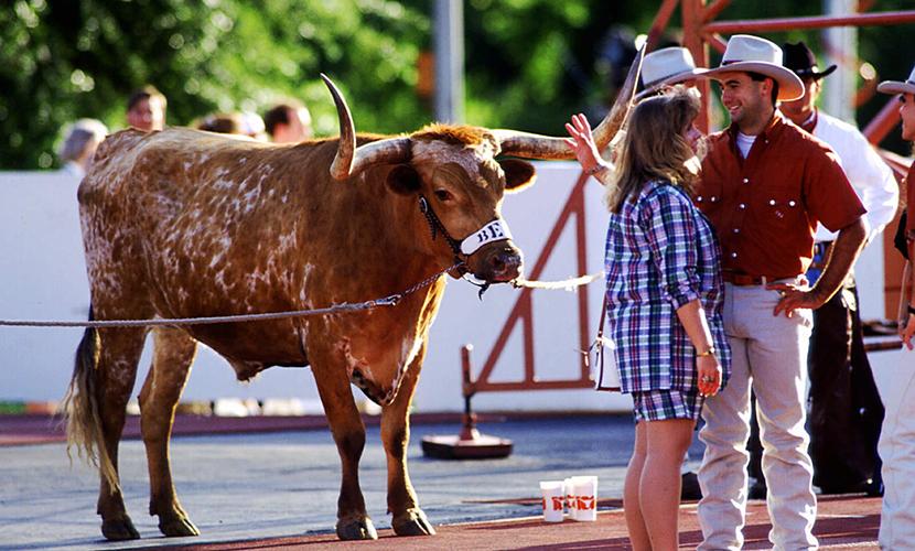 BEVO XIII in 1992