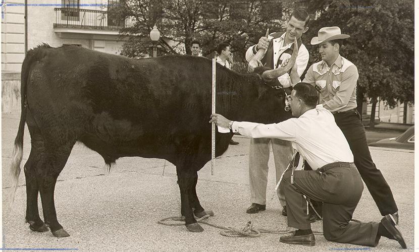 BEVO V in 1952