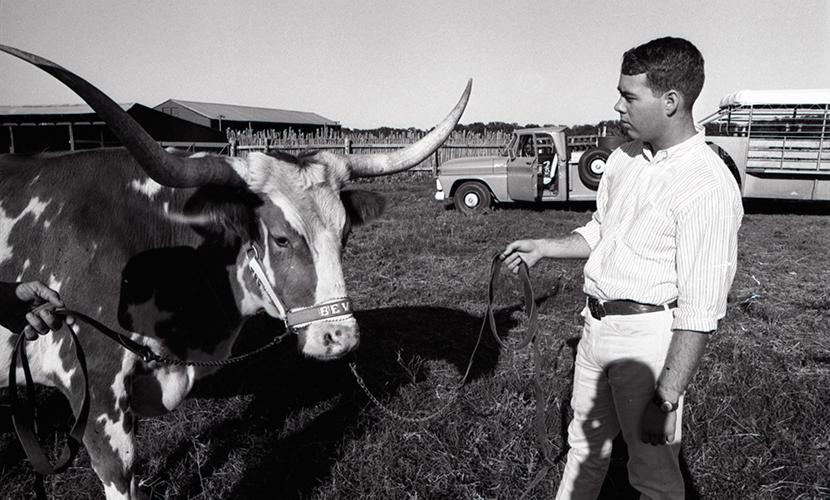 BEVO VIII in 1965