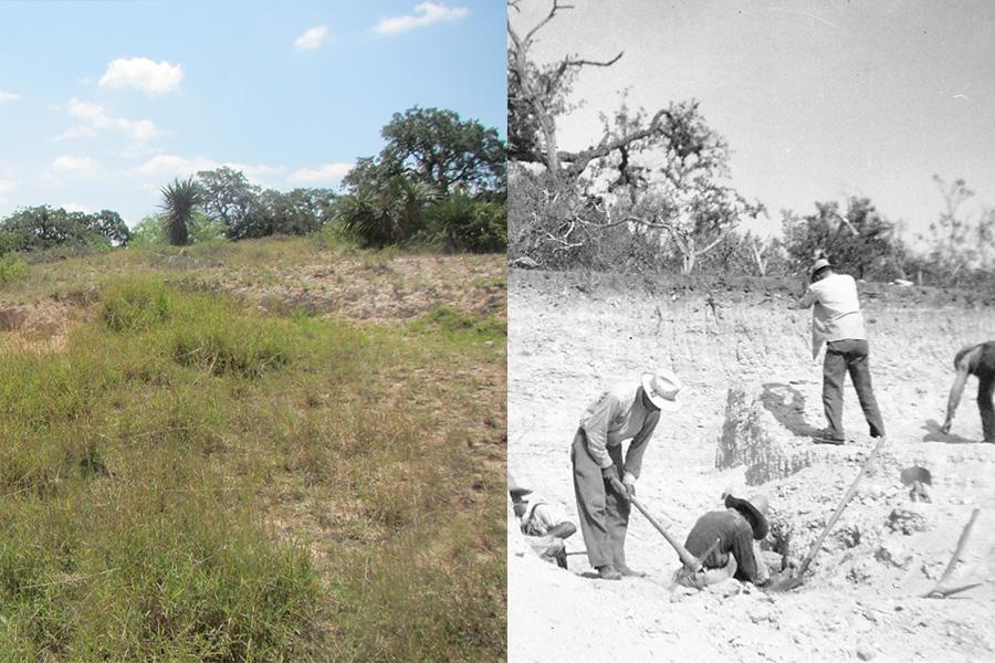 Grassy hill excavation site