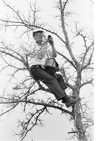 Photographer Charles Moore hides in tree.